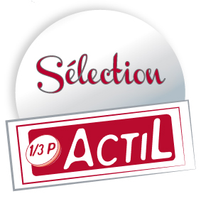 Logo-selection-actil
