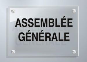 La prochaine Assemblée Générale Miltis à Lyon