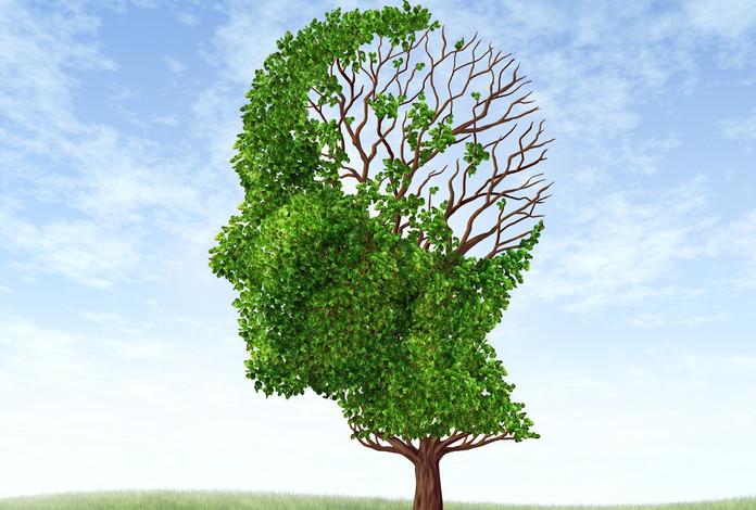 conférence gratuite sur la maladie alzheimer 2016 - Miltis