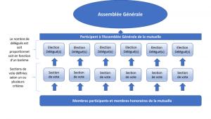 Schéma assemblée générale