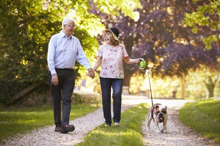 Seniors animal compagnie