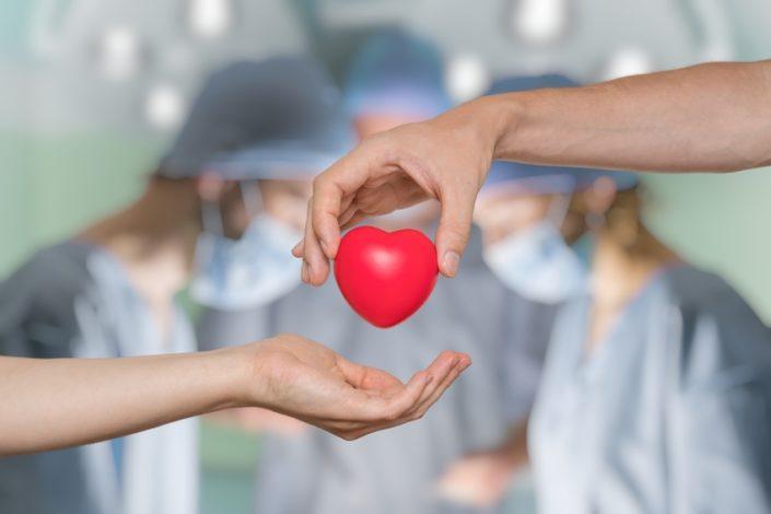 Journée Nationale du don d'organes