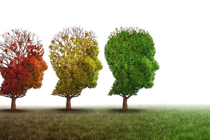 Alzheimer Nora test